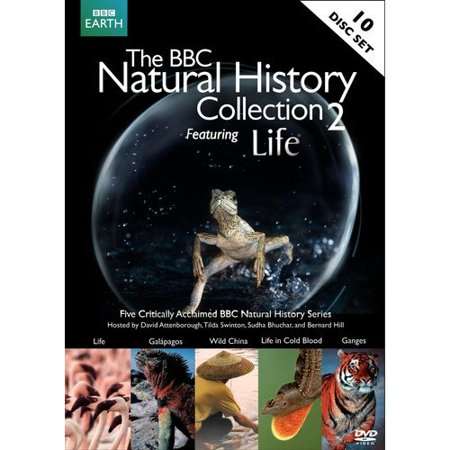 The Bbc Natural History Collection 2  Featuring Life   Widescreen