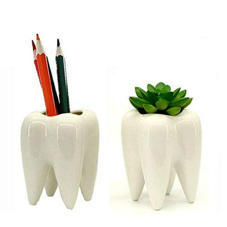 On Clearance 2 Pcs Teeth Garden Planter Mini White Ceramic Flower Plant Succulent Pots Containers ()