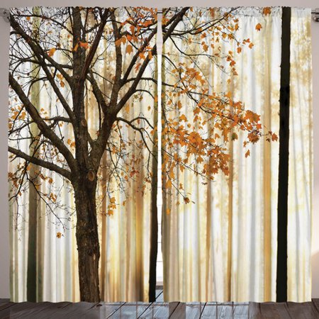 Image of Ambesonne Curtain Panels (Set of 2)