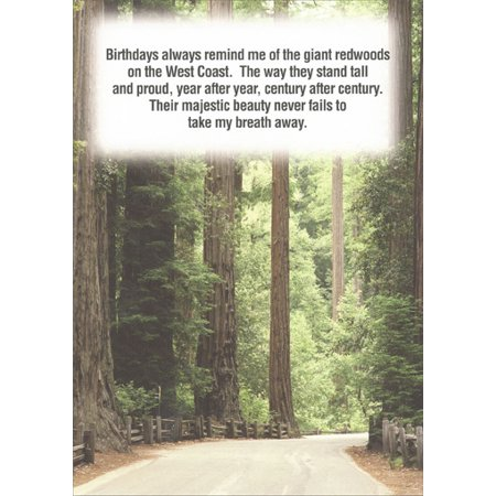Recycled Paper Greetings Giant Redwood Trees Birthday (Best Place To See Giant Redwood Trees)
