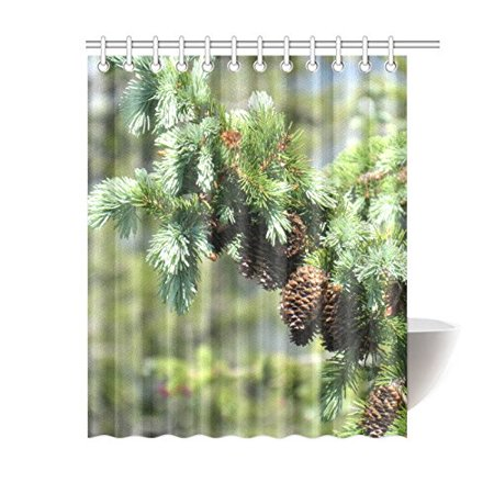 BPBOP Pine Cones Bathroom Waterproof Fabric Shower Curtain 60x72 inches (Pine Cone Fabric Shower Curtain)