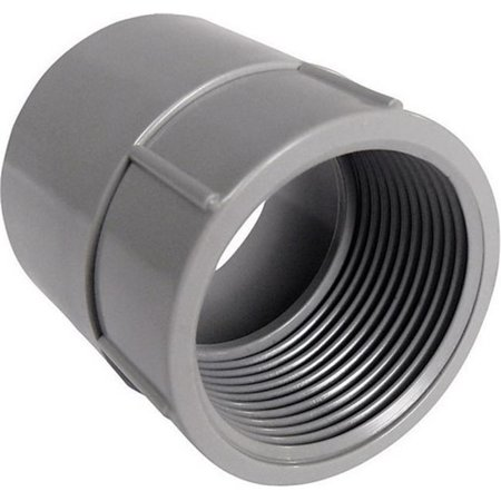 Cantex 1 1 4 PVC Female Adapter 1 15 16 Overall Length 5140046