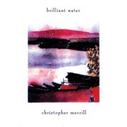 Brilliant Water (Paperback)