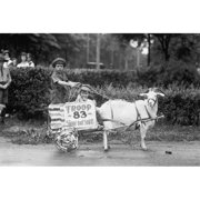 Buy Enlarge 0-587-46230-LP20x30 Goat Pulls Young Boys Cart in the Tacoma Festival- Paper Size P20x30