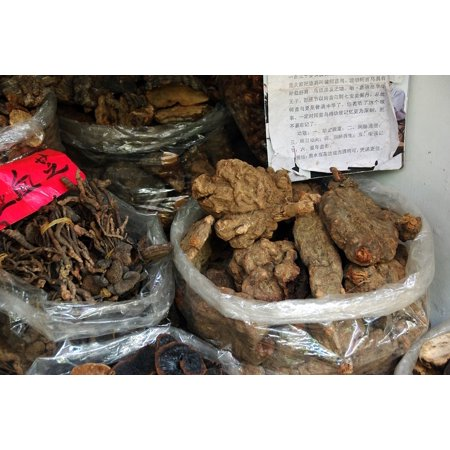 Laminated Poster China Pharmacy Guangdong Roots Drug Poster Print 24 X 36