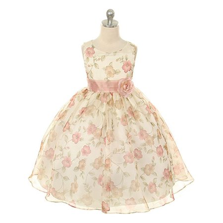 Kids Dream Little Girls Vintage Rose Organza Floral Dress 4T