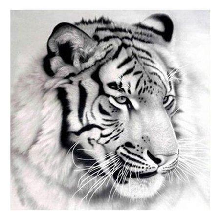 Raypadula Art Painting Tiger Full Drill 5D Diamond Painting Embroidery Cross Stitch Home Decor DIY Gift