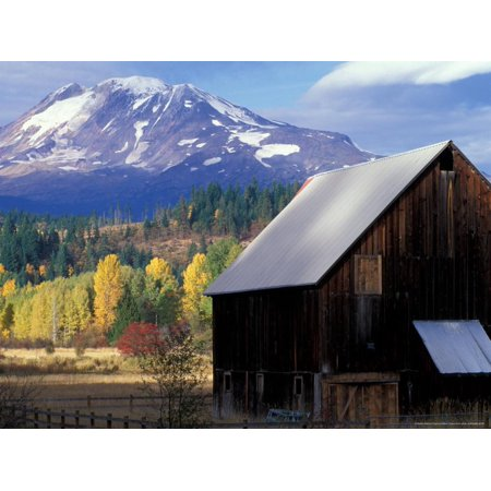 Barn and Mount Adams, Trout Lake, Washington, USA Print Wall Art By William