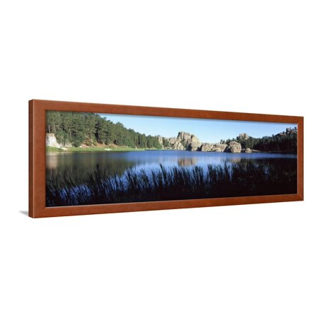 Trees around Lake, Sylvan Lake, Black Hills, Custer State Park, Custer County, South Dakota, USA Framed Print Wall Art By Panoramic Images Custer State Park Black Hills