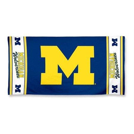 MICHIGAN WOLVERINES NCAA Logo approx. 30