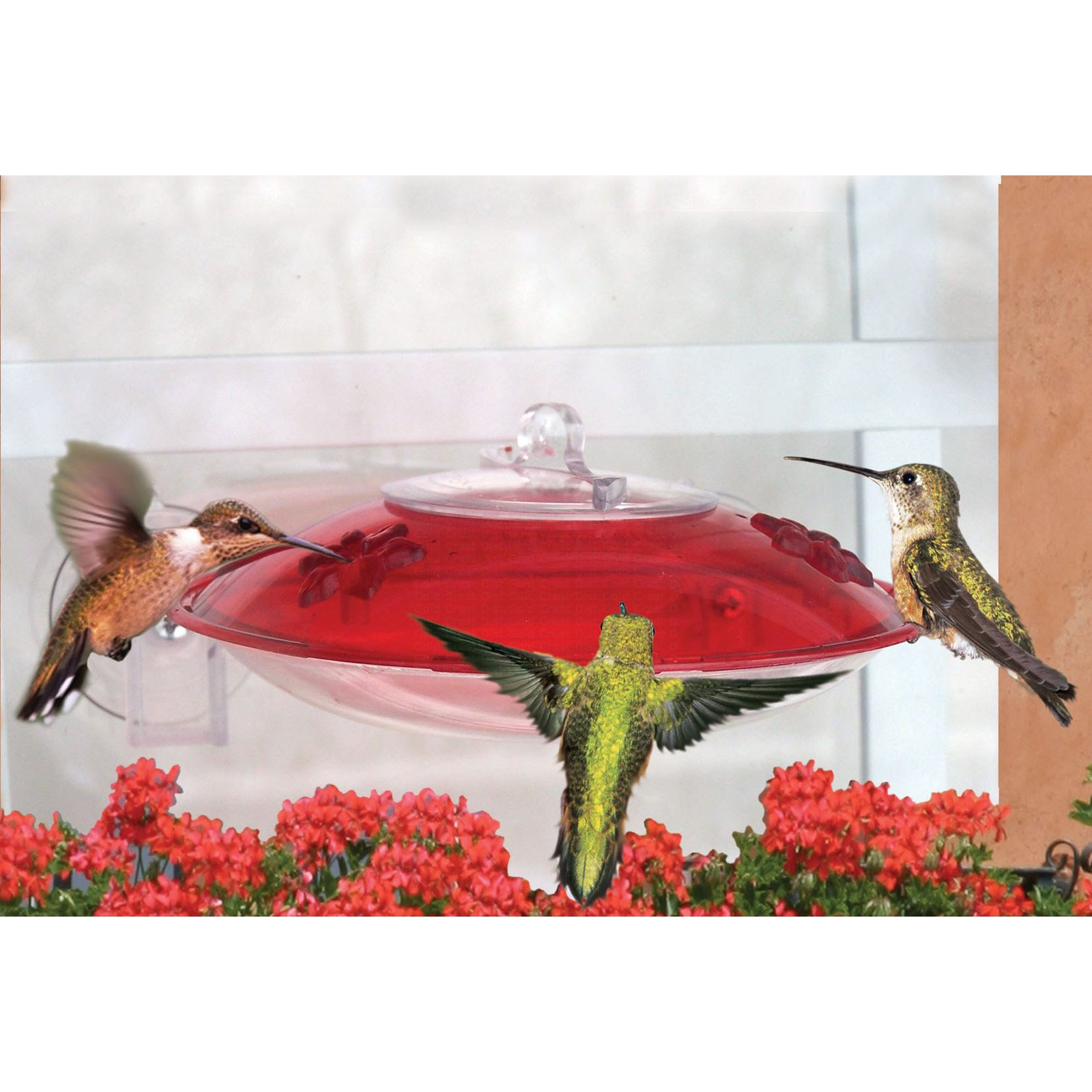 Droll Yankees Window Hummer 3 Hummingbird Feeder with 2 Ports