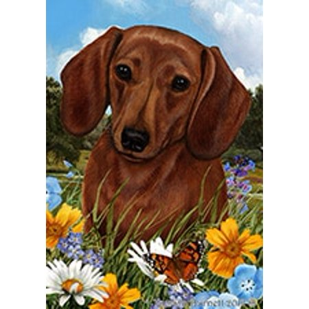 Dachshund Red - Best of Breed Summer Flowers Garden Flags Summer Flowers Garden Flag