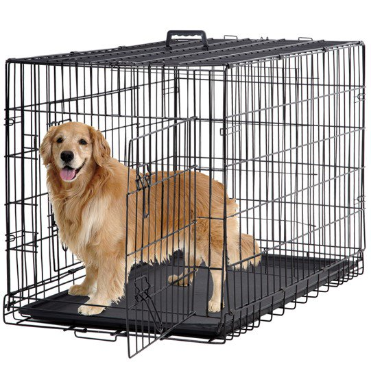 Bestpet Double Door Metal Dog Crate
