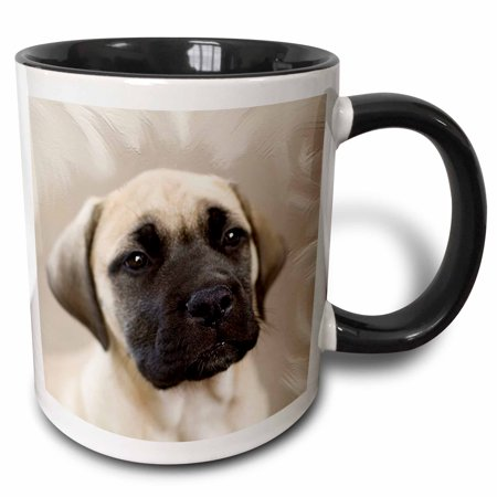 - 3dRose Bullmastiff Puppy - Two Tone Black Mug, 11-ounce
