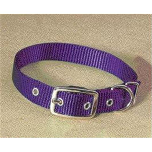 Hamilton Pet Company - Single Thick Nylon Dog Collar- Hot Purple . 63 X 14 - ST 14PU