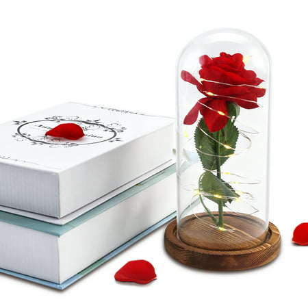Beauty and the Beast Rose Fallen Petals in Glass Dome on Wooden Base for Birthday Christmas Valentine's