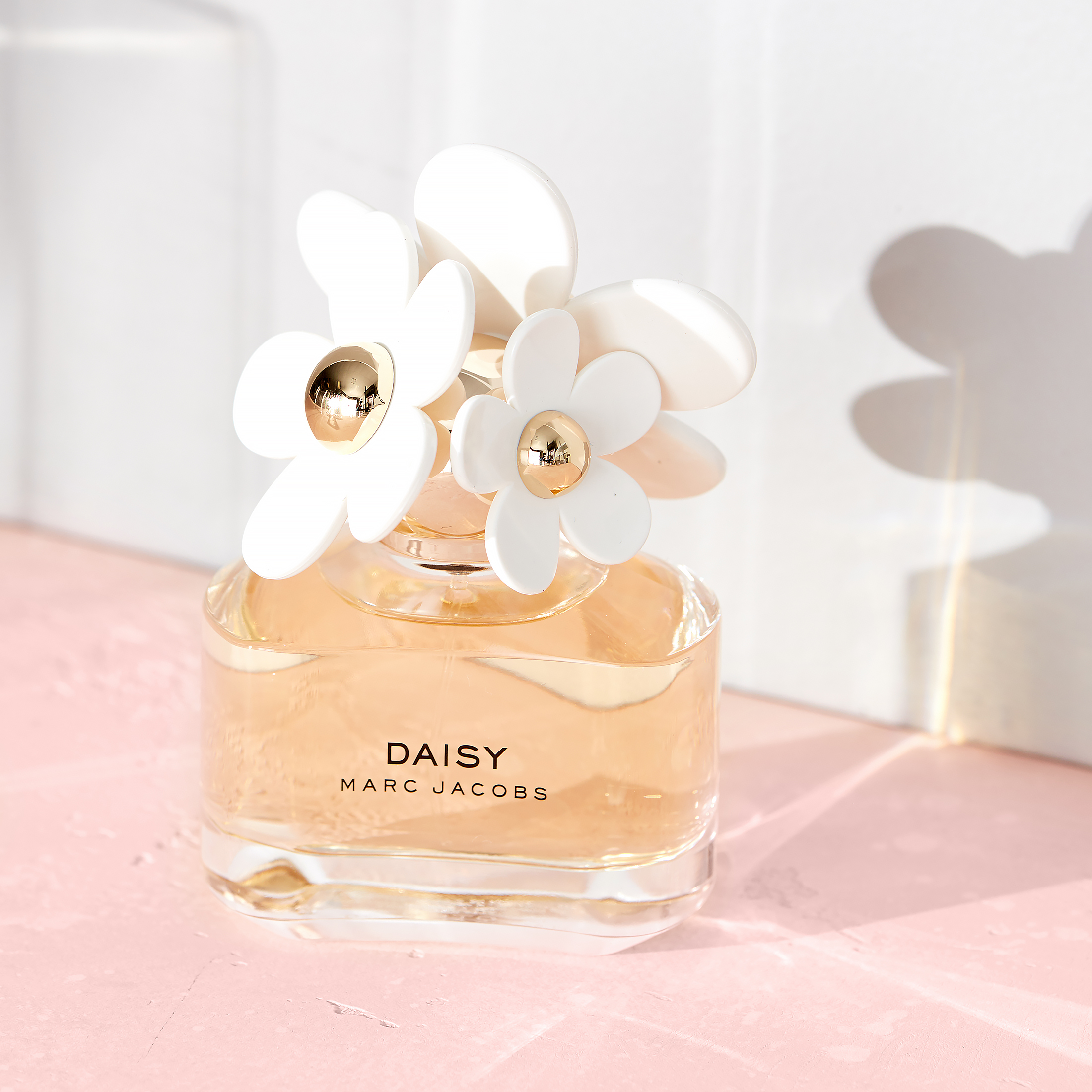 6 Daisy Gazebo Wedding Candle Lanterns!~YOU GET 6~ELEGANT~CHIC~SHIPS WORLDWIDE