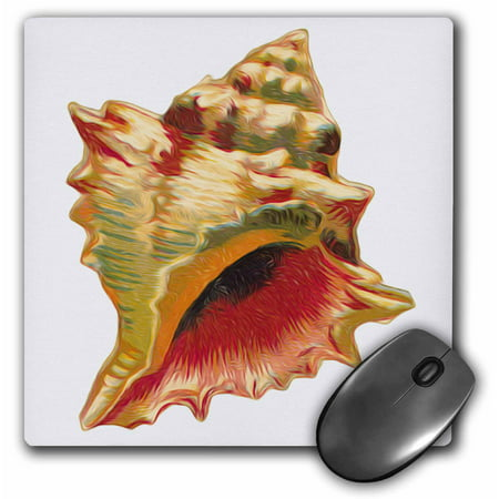 3dRose Vintage Victorian Antique Conch Shell Nature Ilustration Faux Oil Painting Effect, Mouse Pad, 8 by 8