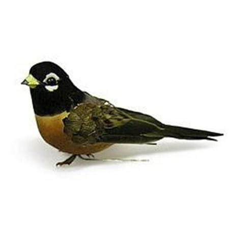 Midwest Design Bird 3.75
