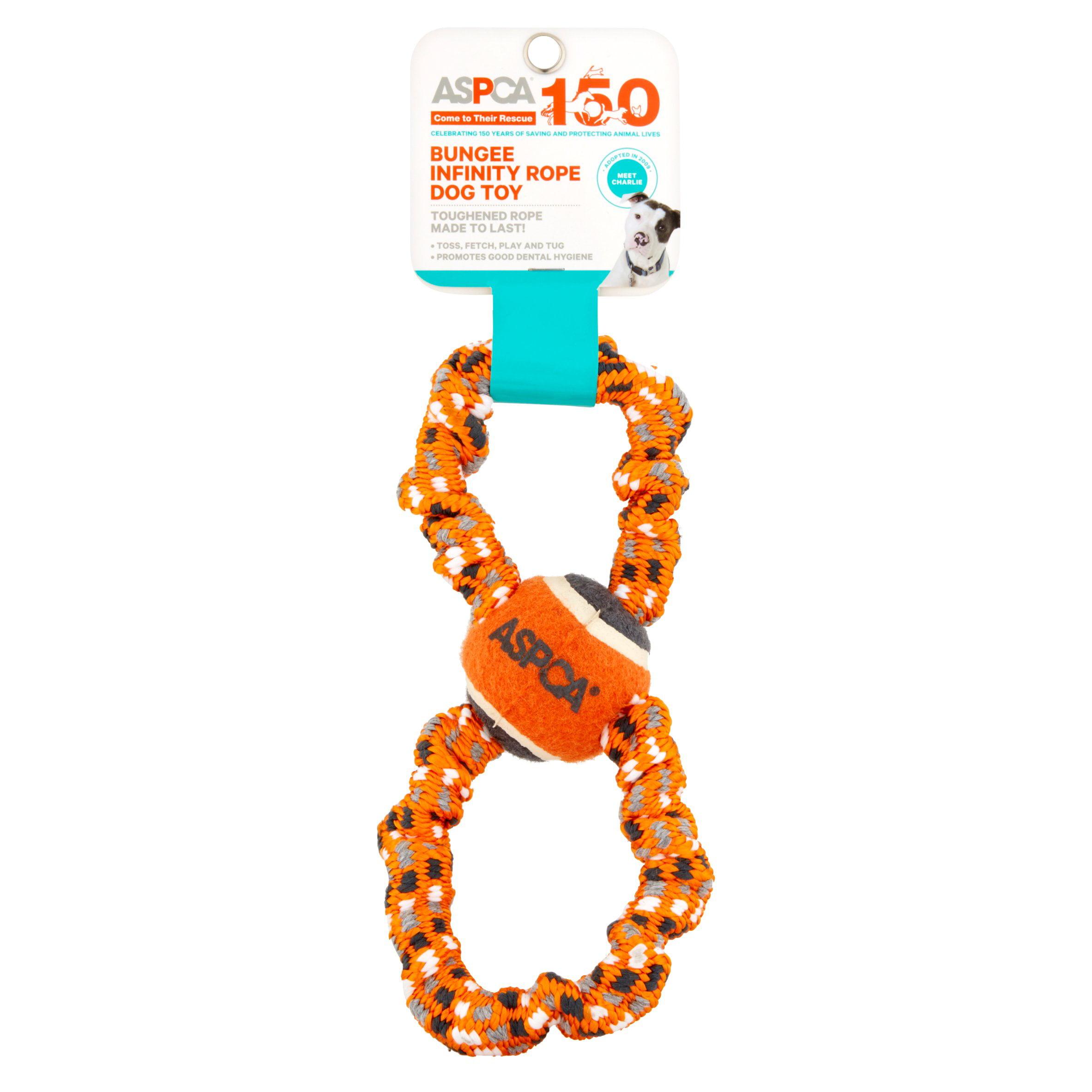 ASPCA Blue Bungee Infinity Rope Dog Toy by European Home Designs, LLC