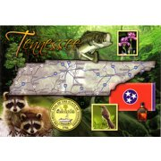 Jenkins Tennessee Postcard- State Map (pack Of 600)