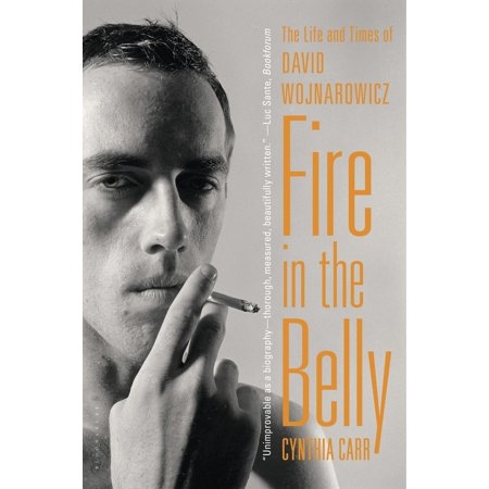 Fire in the Belly : The Life and Times of David Wojnarowicz David Carr Hand Signed