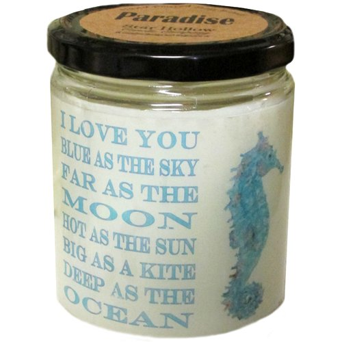 Star Hollow Candle Company ''Seahorse'' Scented Jar Candle