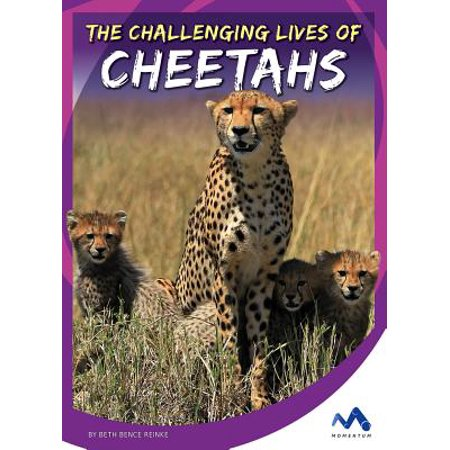 Cheetah Life (The Challenging Lives of Cheetahs)