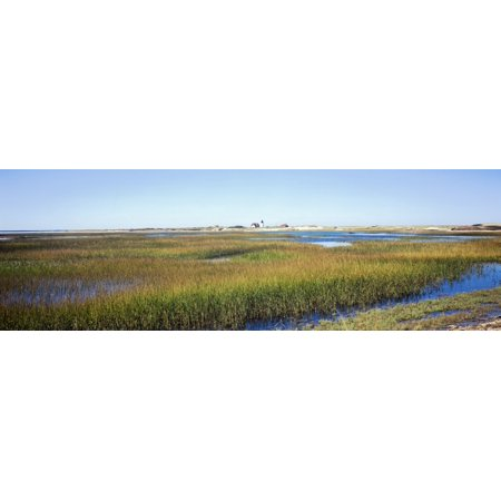 Swamp With Lighthouse In The Background Race Point Light Provincetown Cape Cod Barnstable County Massachusetts Usa Canvas Art   Panoramic Images  12 X 36