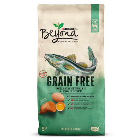 Purina Beyond Grain Free Ocean Whitefish & Egg Recipe Adult Dry Cat Food, 5 lb - Halloween Egg Recipes