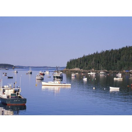 Lobster Boats in Stonington Harbor, Maine, USA Print Wall Art By Jerry & Marcy