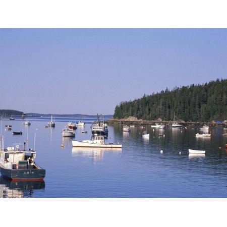 Stonington Harbor (Lobster Boats in Stonington Harbor, Maine, USA Print Wall Art By Jerry & Marcy Monkman )