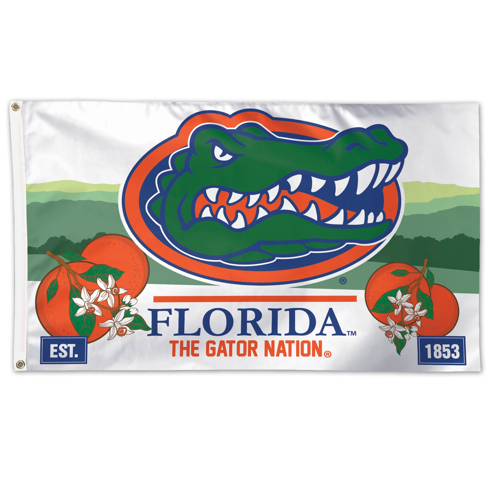 WinCraft Florida State University S11518 Specialty Acrylic License Plate