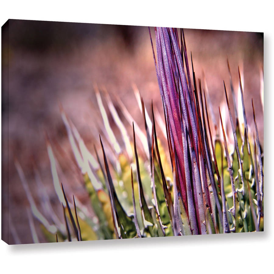 "Mark Ross ""Agave"" Wrapped Canvas Art"
