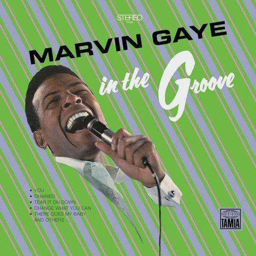 In the Groove (Vinyl)