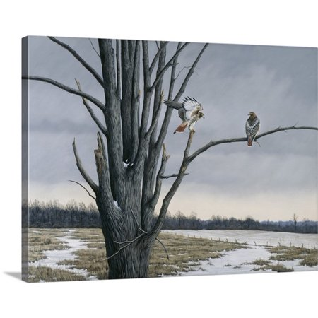 Great Big Canvas Wilhelm Goebel Premium Thick Wrap Canvas Entitled Old Elm And Redtails