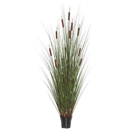 60 in. Grass with 12 Cattails Potted - image 1 de 1