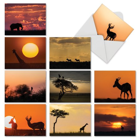 M6551OCB SAFARI SUNSETS' 10 Assorted All Occasions Greeting Cards Featuring Silhouettes of African Animals Set Against the Setting Sun with Envelopes by The Best Card