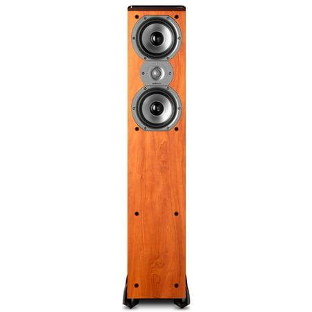 Polk Audio TSi300 Floorstanding Speaker (Single) (Polk Audio Rti A7 Floorstanding Speaker Single Black)