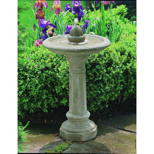 Acorn Outdoor Cast Stone Birdbath Garden Water Fountain by Campania International