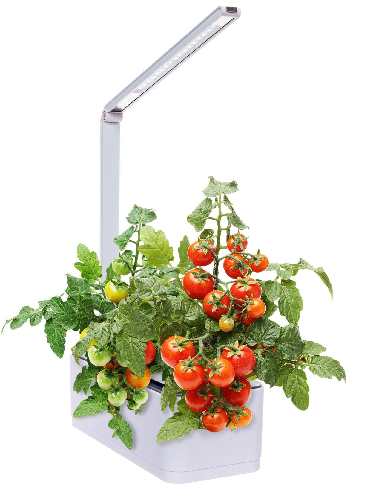 Mindful Design Hydroponic Desktop Herb Garden w/ Multispectrum LED Growing  Lamp