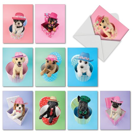 M2955BDG HAT DOGS' 10 Assorted Birthday Note Cards Featuring Big Eyed Dogs Wearing Hats Coming Out of Presents, with Envelopes by The Best Card