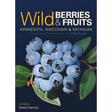 Wild Berries & Fruits Identification Guides: Wild Berries & Fruits Field Guide of Minnesota, Wisconsin & Michigan (Edition 2) (Paperback)
