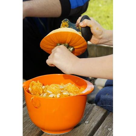 LAMINATED POSTER Autumn Halloween Orange Vegetables Pumpkin Poster Print 24 x 36 - Halloween Colors Demo
