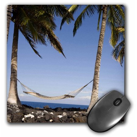 3dRose Hawaii, Kona Village, Hammock Between Two Palm Trees - US12 RCA0009 - Rob Casey, Mouse Pad, 8 by 8 inches ()
