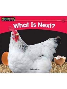 Newmark Learning NL0381 Math - Volume 1 - What Is Next