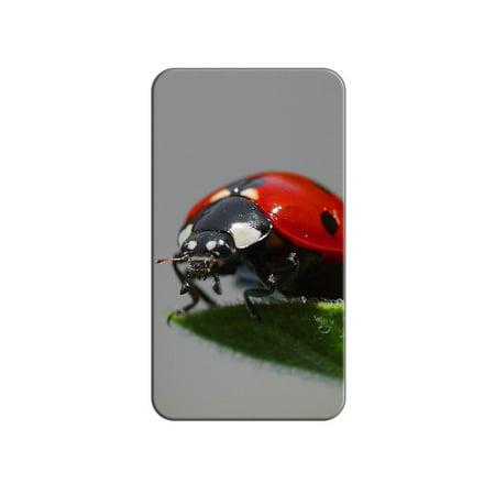 Ladybug Close-up - Lady Bug Beetle Lapel Hat Pin Tie Tack