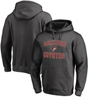 Arizona Coyotes Fanatics Branded Victory Arch Pullover Hoodie - Heathered Gray