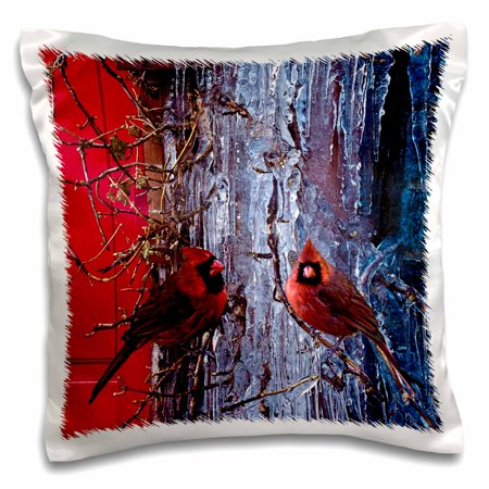 3dRose Ice Red Cardinals Christmas Winter Birds - Pillow Case, 16 by 16-inch