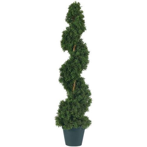 3' Cedar Spiral Silk Tree